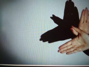 Тень птицы с помощью рук и фонарика