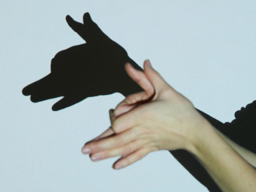 Тень волка с помощью рук и фонарика